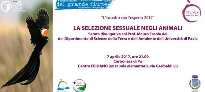 """LA SELEZIONE SESSUALE NEGLI ANIMALI"""", Serata col Prof. Mauro Fasola del Dipartimento di Scienze della Terra e dell'Ambiente dell'Università di Pavia,"""
